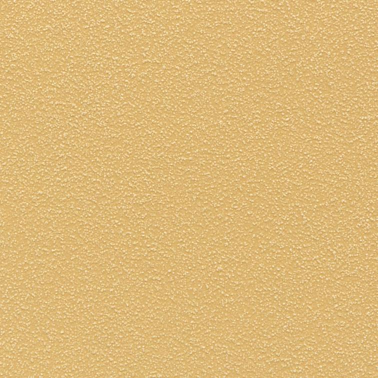 Mono sloneczne R (RAL D2/080 80 50)