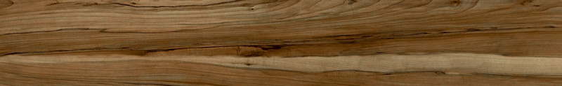 Wood Land brown